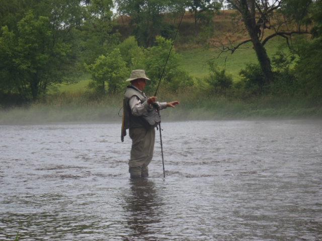Carolina fly fishing club south holston river mid week trip for Fly fishing south carolina